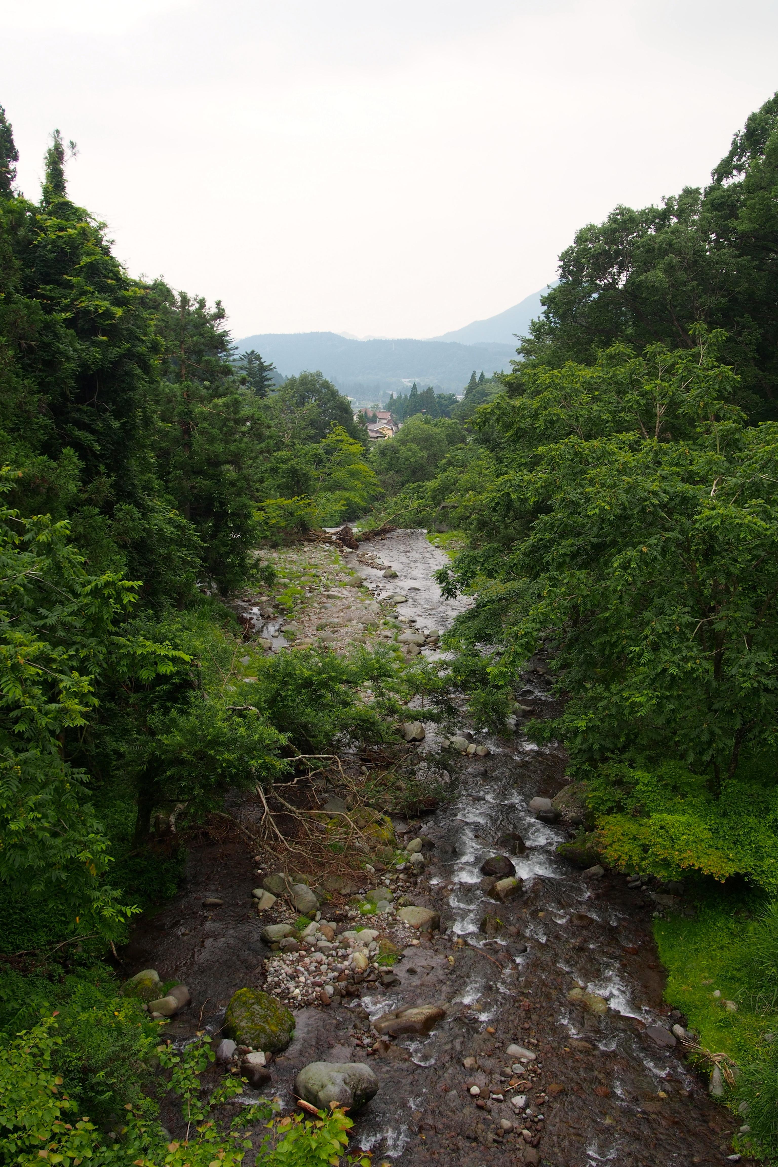 酒店附近的河流