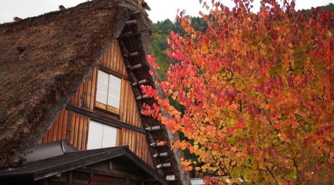 【即時紅葉。持續更新】日本北陸、中部秋季紅葉照片(2015.10) 《上卷》