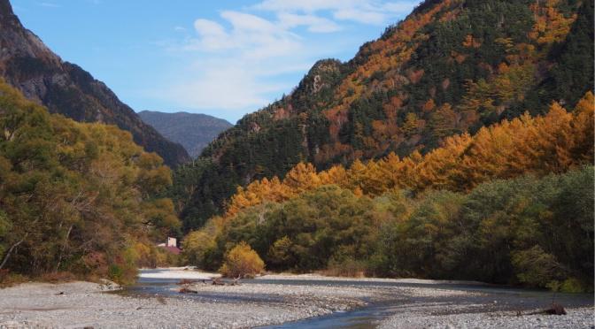 〖秋の飛騨道〗〔上高地〕河童橋大正池散步 梓川旁的金黃與紅