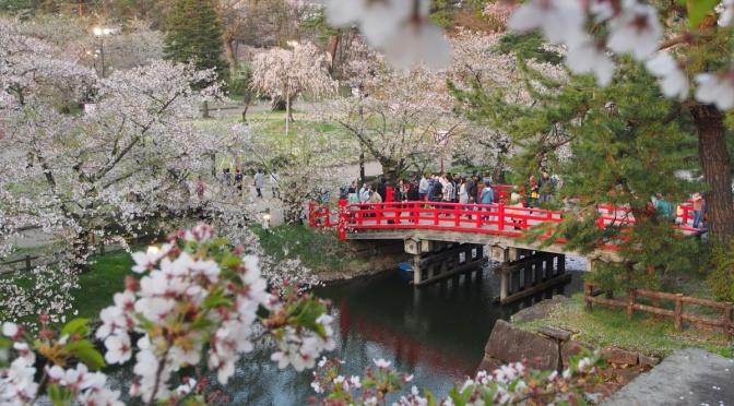 2017 日本東北追櫻:弘前 弘前公園(日間)